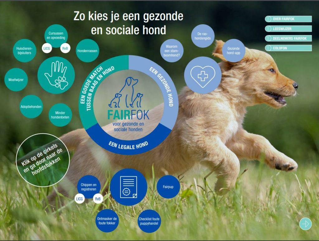 Een handige brochure voor het kiezen van de juiste hond voor jouw leefsituatie.